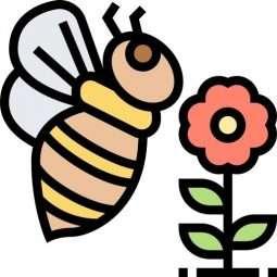 Raccolta polline e Pappa