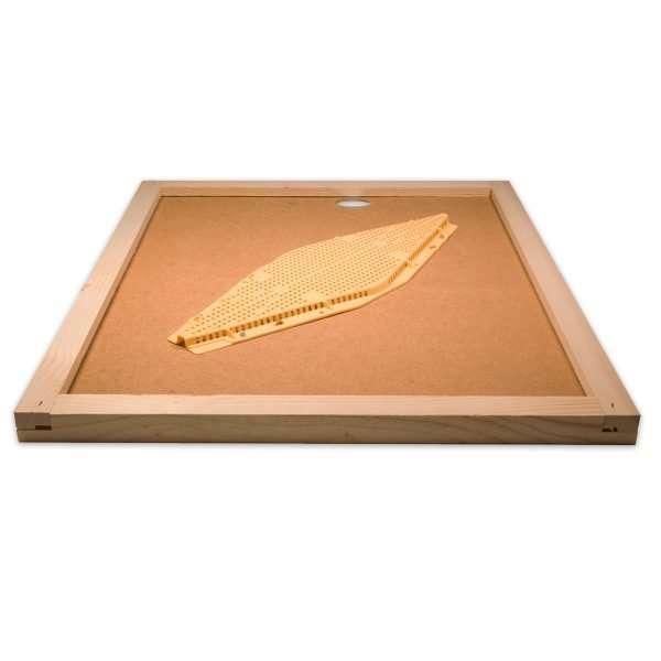 Apiscampo a losanga su tavoletta da 10 favi 43x50