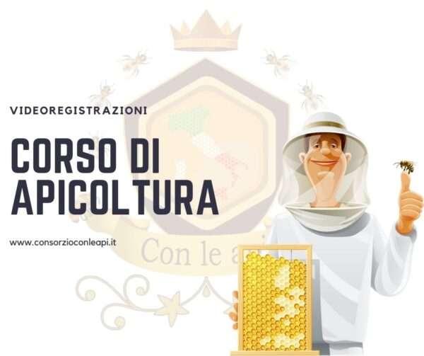 Corso di apicoltura videolezioni